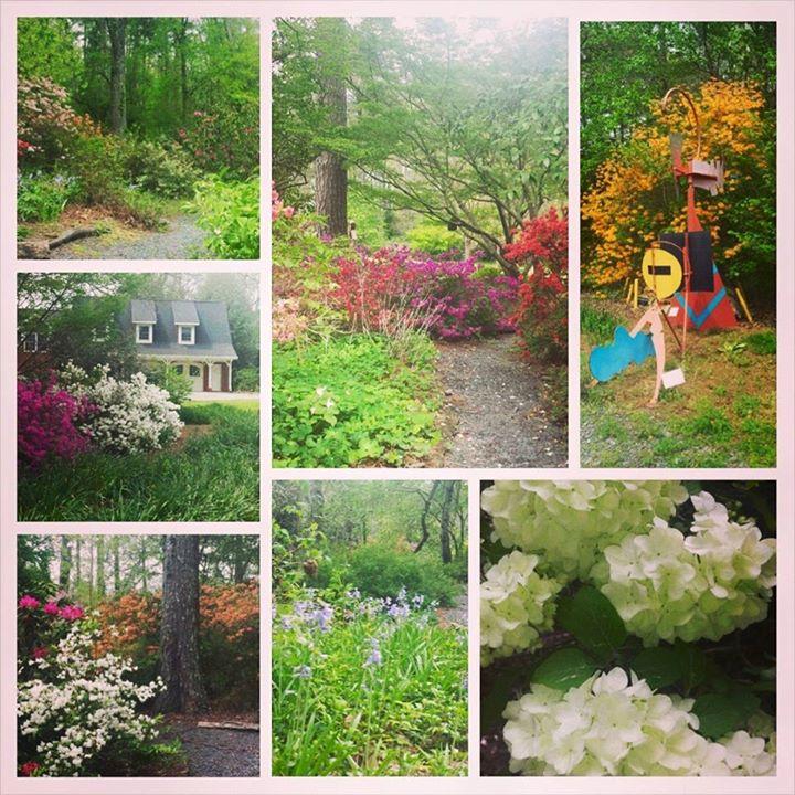 Spring Scenes of April in the Garden!